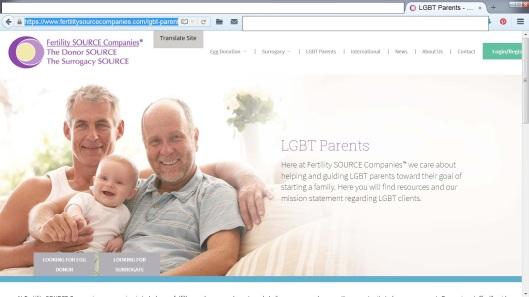 LGBT Surrogacy